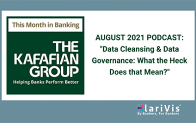 Data Cleansing & Data Governance: What the Heck Does that Mean?